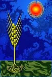 Wheat&Sun