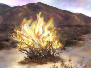 burning_bush